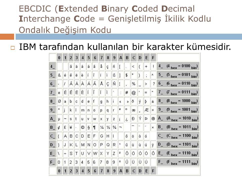 IBM tarafından kullanılan bir karakter kümesidir.