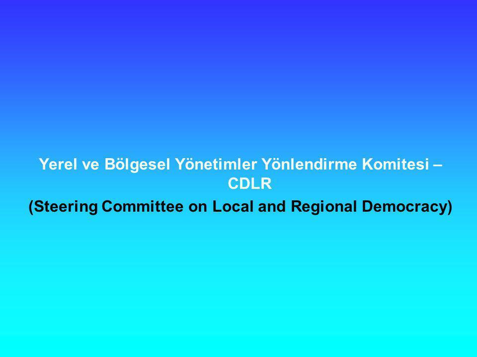 Yerel ve Bölgesel Yönetimler Yönlendirme Komitesi – CDLR