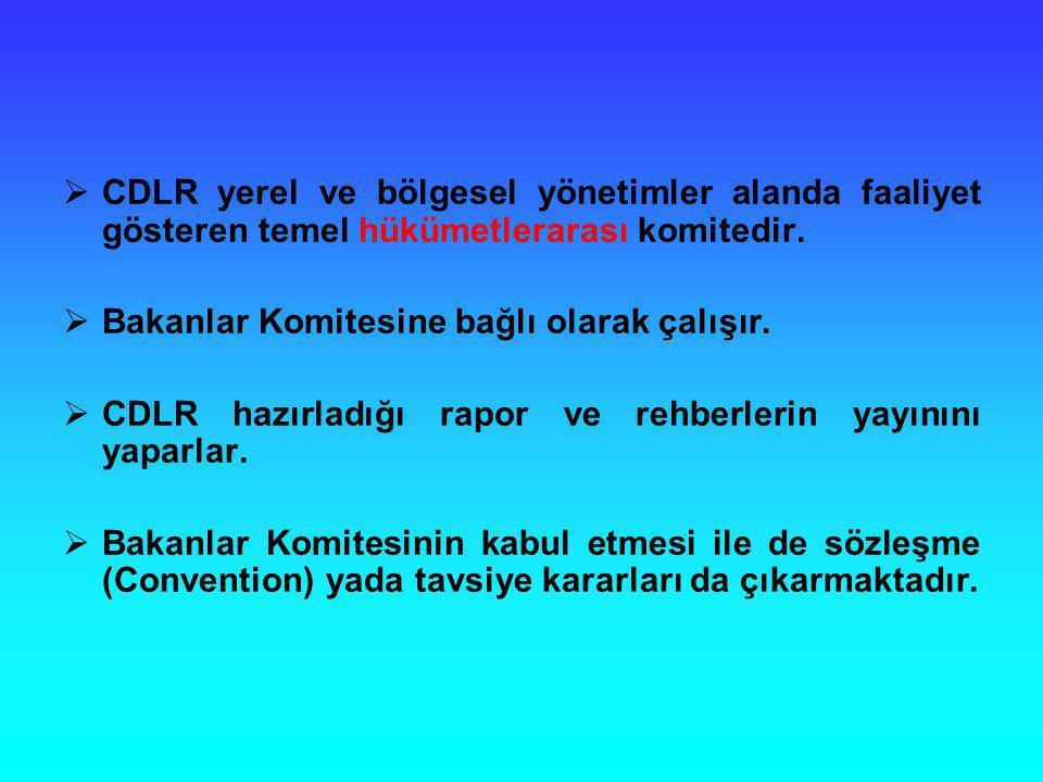 CDLR yerel ve bölgesel yönetimler alanda faaliyet gösteren temel hükümetlerarası komitedir.