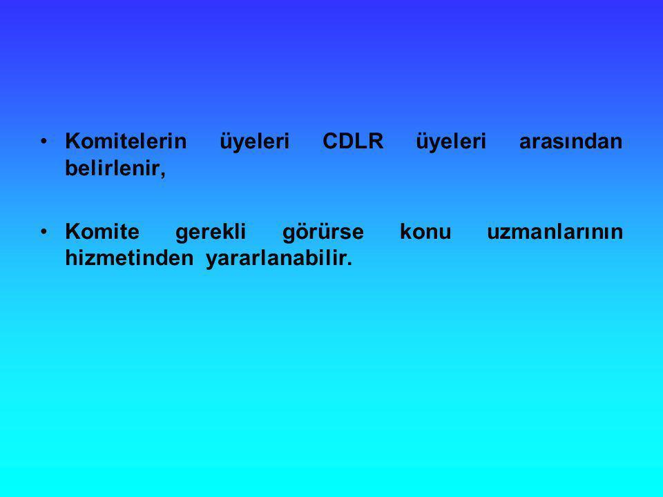 Komitelerin üyeleri CDLR üyeleri arasından belirlenir,