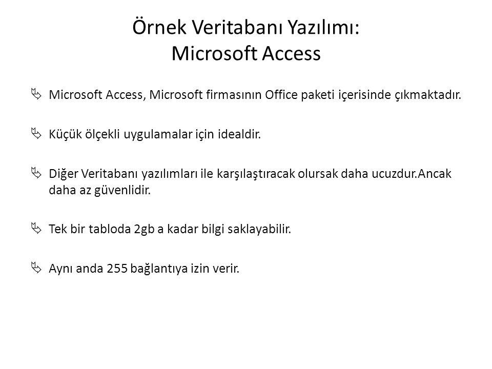 Örnek Veritabanı Yazılımı: Microsoft Access