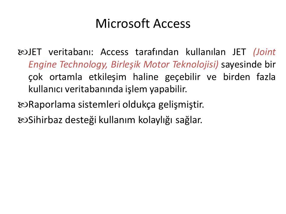 Microsoft Access Raporlama sistemleri oldukça gelişmiştir.