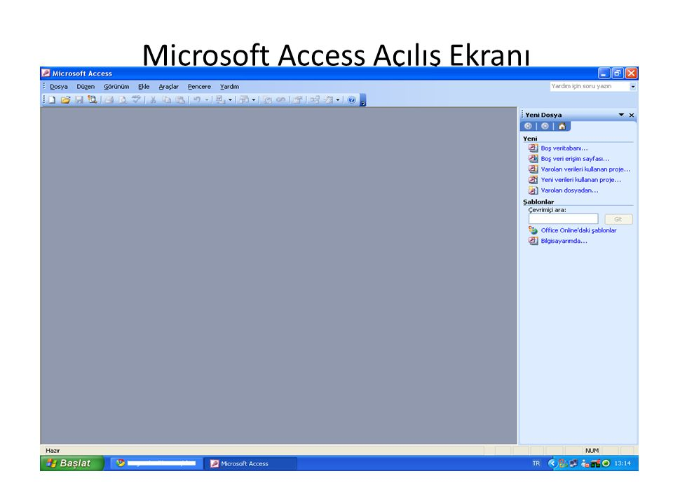 Microsoft Access Açılış Ekranı