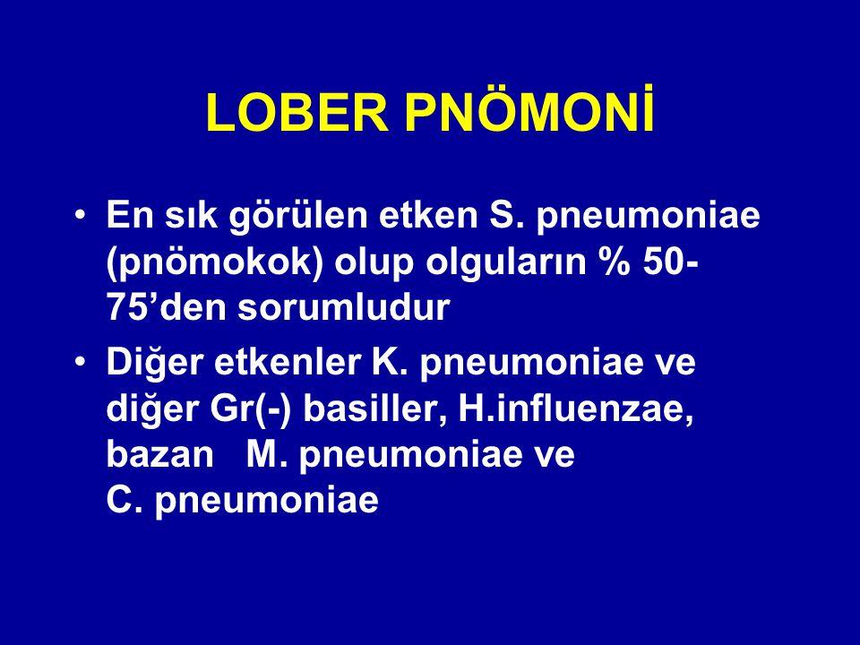 LOBER PNÖMONİ En sık görülen etken S. pneumoniae (pnömokok) olup olguların % 50-75'den sorumludur.