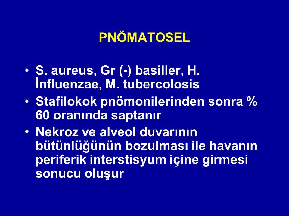 PNÖMATOSEL S. aureus, Gr (-) basiller, H. İnfluenzae, M. tubercolosis. Stafilokok pnömonilerinden sonra % 60 oranında saptanır.