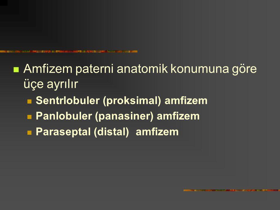 Amfizem paterni anatomik konumuna göre üçe ayrılır