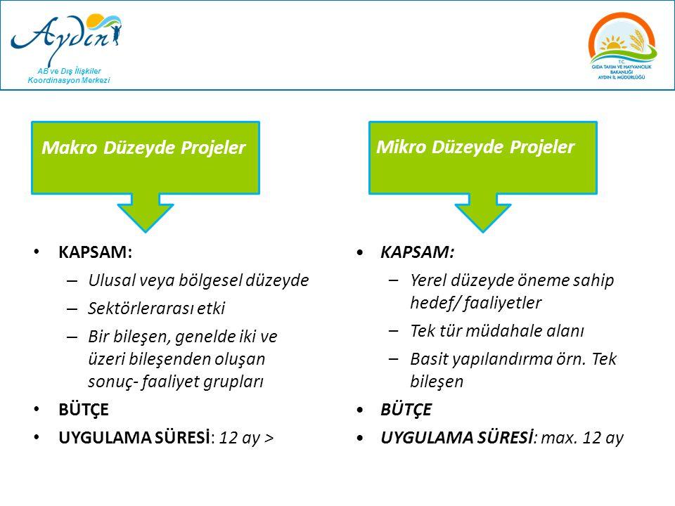 Makro Düzeyde Projeler Mikro Düzeyde Projeler