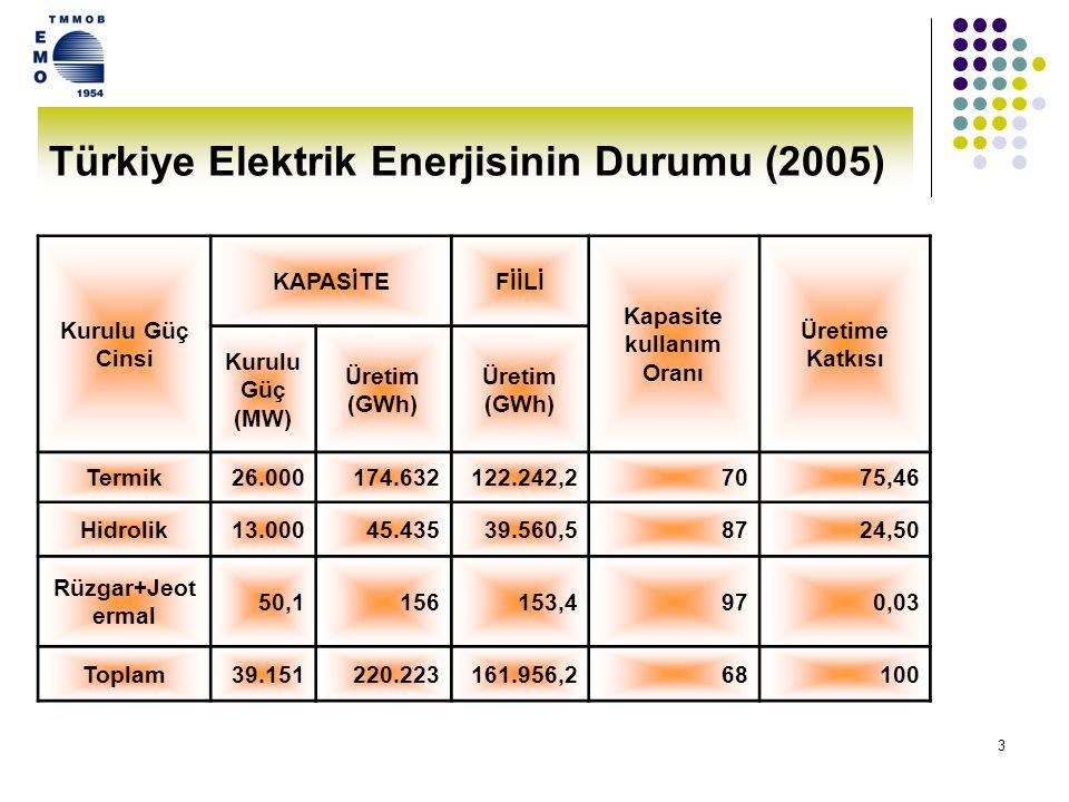 Türkiye Elektrik Enerjisinin Durumu (2005)
