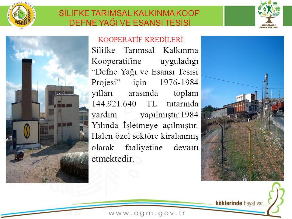 SİLİFKE TARIMSAL KALKINMA KOOP. DEFNE YAĞI VE ESANSI TESİSİ