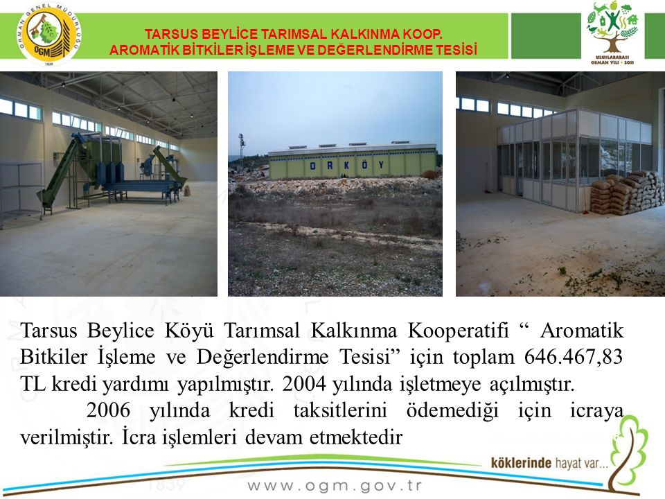 TARSUS BEYLİCE TARIMSAL KALKINMA KOOP