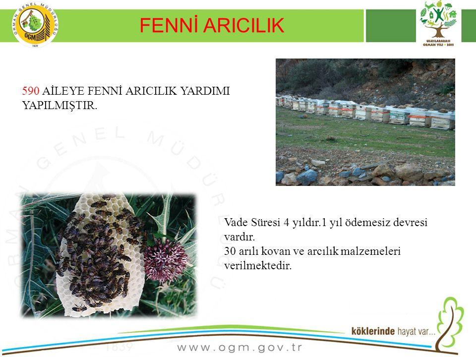 FENNİ ARICILIK 590 AİLEYE FENNİ ARICILIK YARDIMI YAPILMIŞTIR.