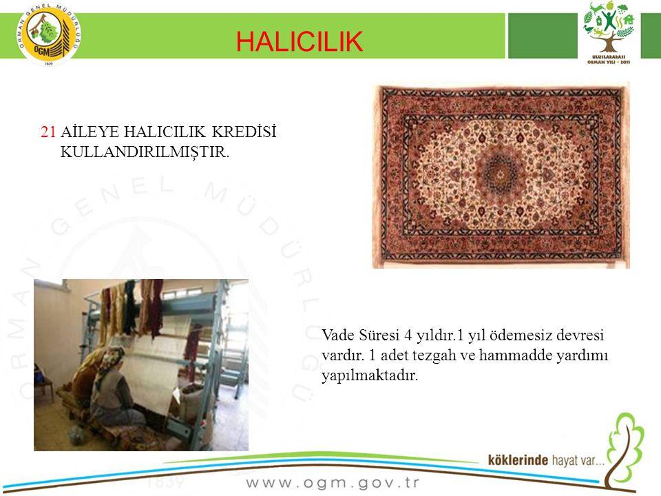 HALICILIK 21 AİLEYE HALICILIK KREDİSİ KULLANDIRILMIŞTIR.