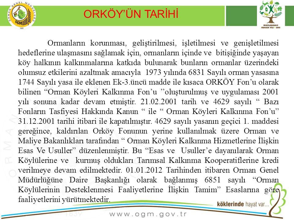 ORKÖY'ÜN TARİHİ