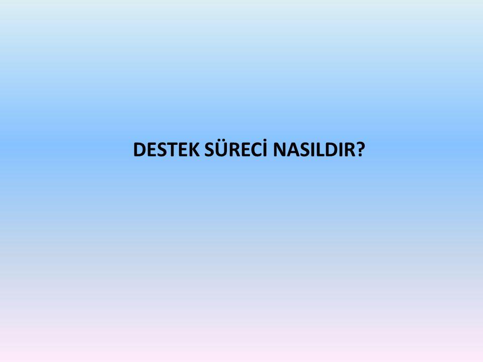 DESTEK SÜRECİ NASILDIR