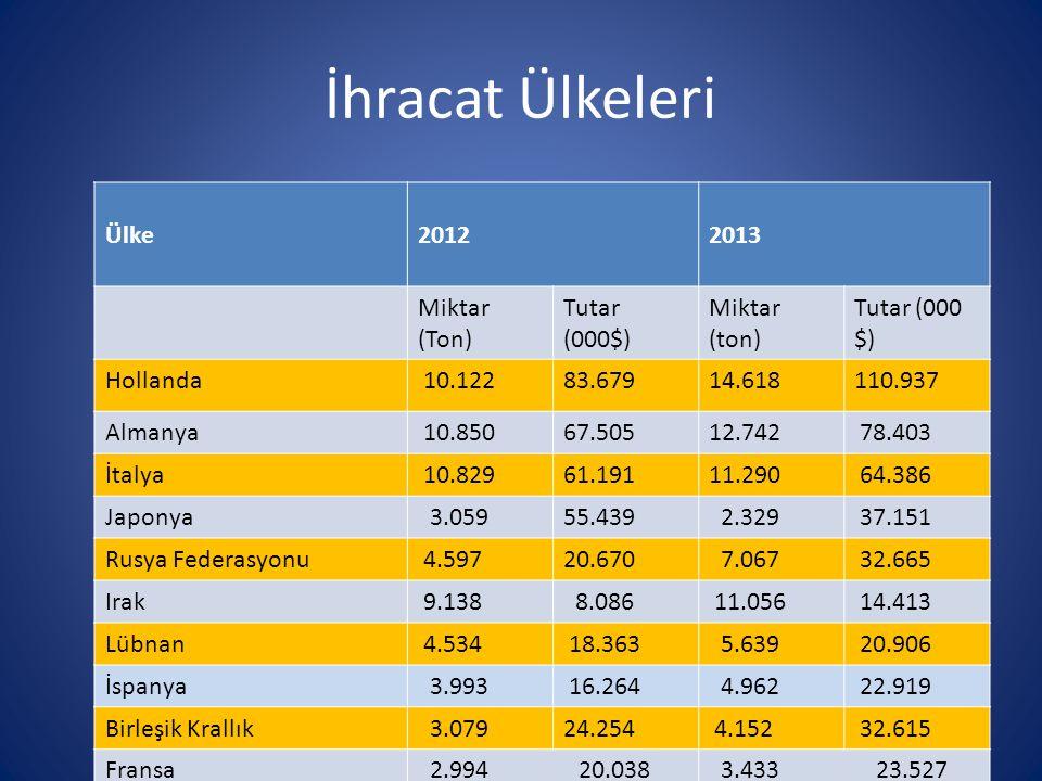 İhracat Ülkeleri Ülke 2012 2013 Miktar (Ton) Tutar (000$) Miktar (ton)