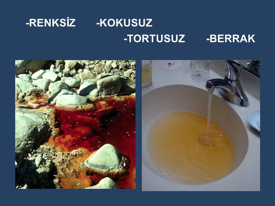 -RENKSİZ -KOKUSUZ -TORTUSUZ -BERRAK