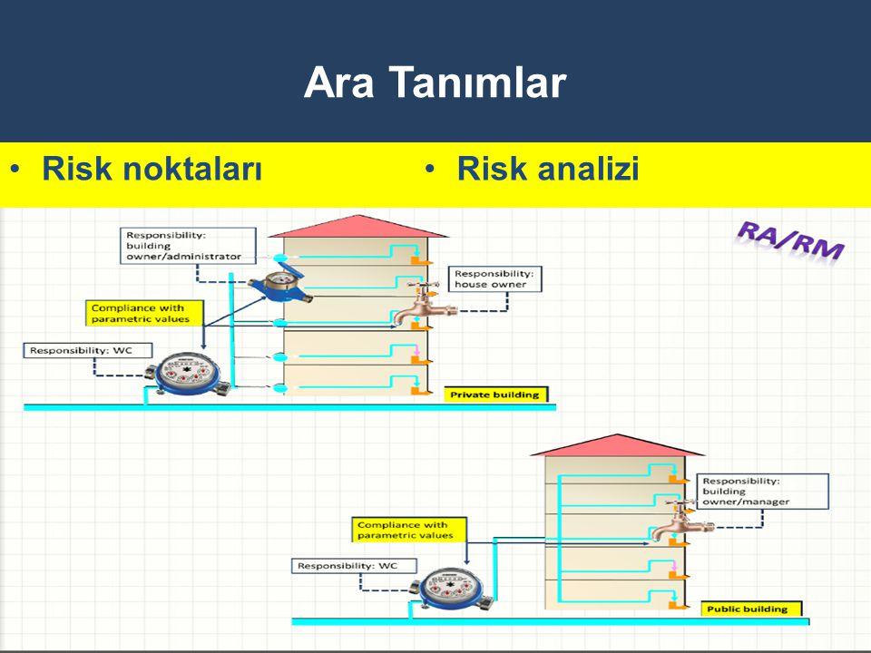 Ara Tanımlar Risk noktaları Risk analizi