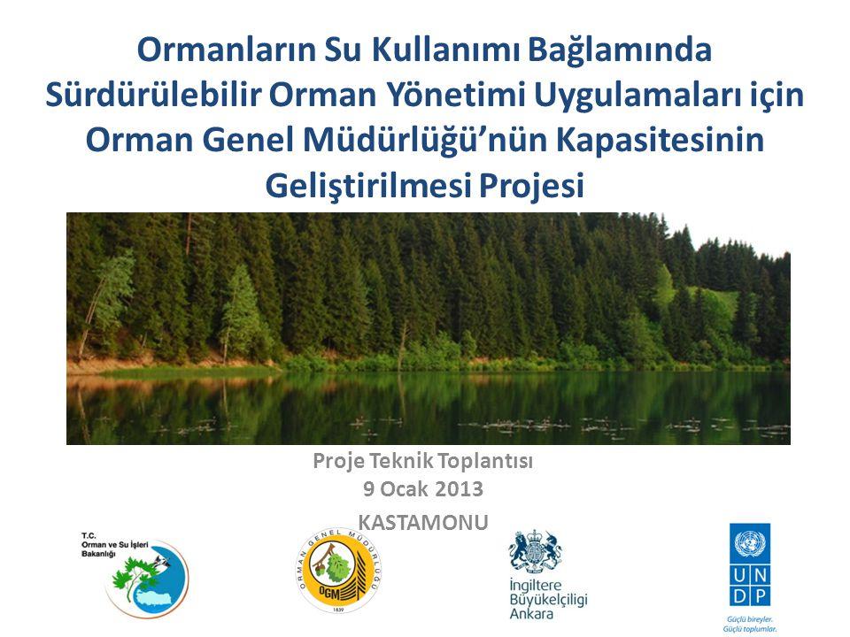 Proje Teknik Toplantısı 9 Ocak 2013 KASTAMONU