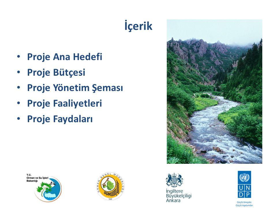 İçerik Proje Ana Hedefi Proje Bütçesi Proje Yönetim Şeması