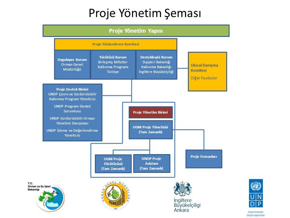 Proje Yönlendirme Komitesi