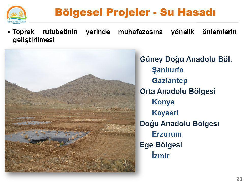 Bölgesel Projeler - Su Hasadı