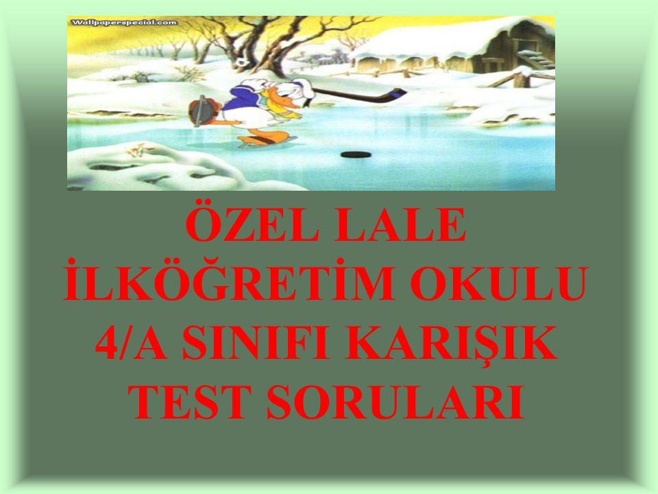 ÖZEL LALE İLKÖĞRETİM OKULU 4/A SINIFI KARIŞIK TEST SORULARI