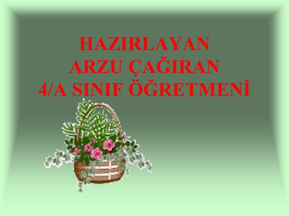HAZIRLAYAN ARZU ÇAĞIRAN 4/A SINIF ÖĞRETMENİ