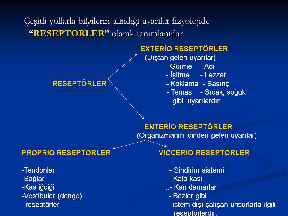 Çeşitli yollarla bilgilerin alındığı uyarılar fizyolojide RESEPTÖRLER olarak tanımlanırlar
