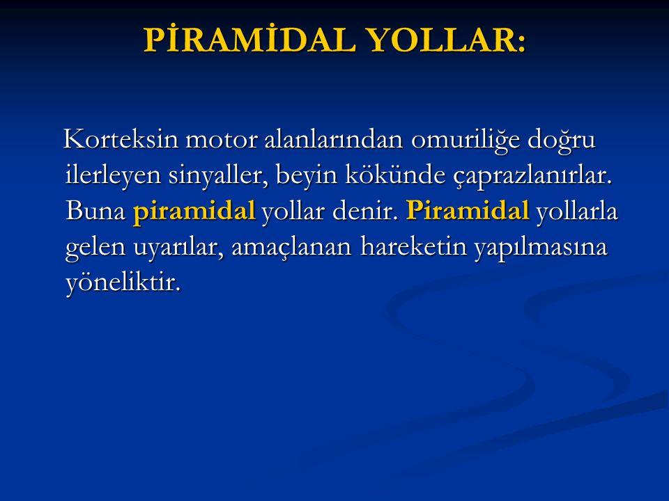 PİRAMİDAL YOLLAR:
