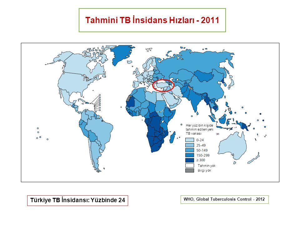 Tahmini TB İnsidans Hızları - 2011