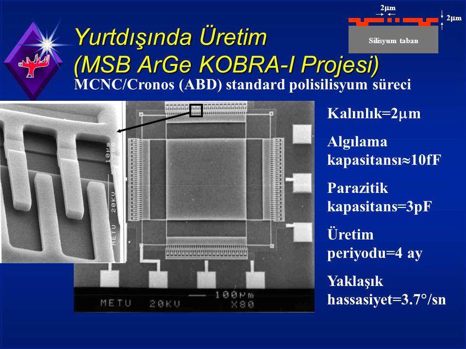 Yurtdışında Üretim (MSB ArGe KOBRA-I Projesi)