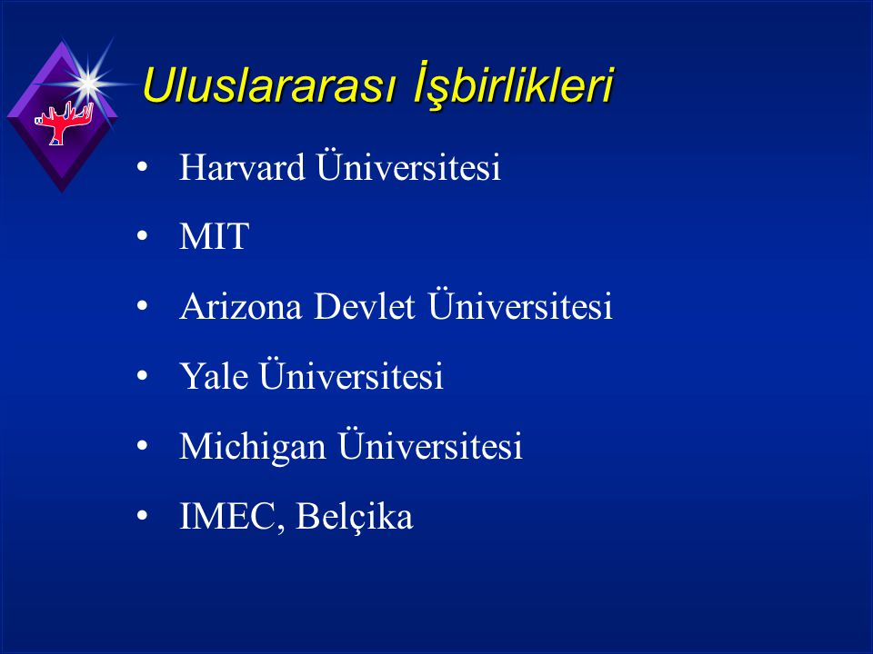 Uluslararası İşbirlikleri