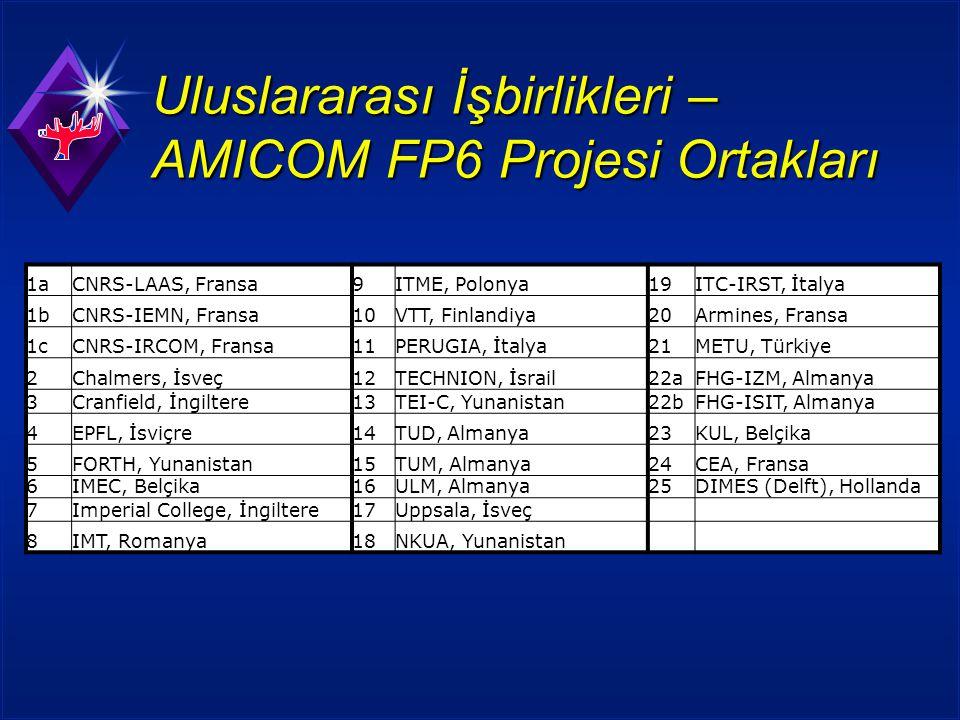 Uluslararası İşbirlikleri – AMICOM FP6 Projesi Ortakları