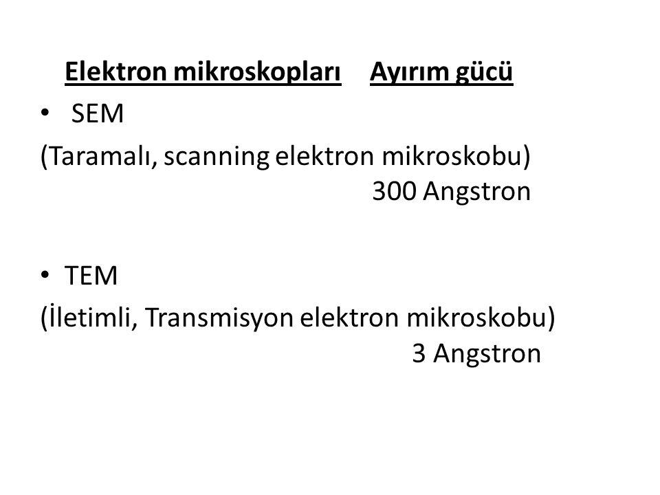 Elektron mikroskopları Ayırım gücü