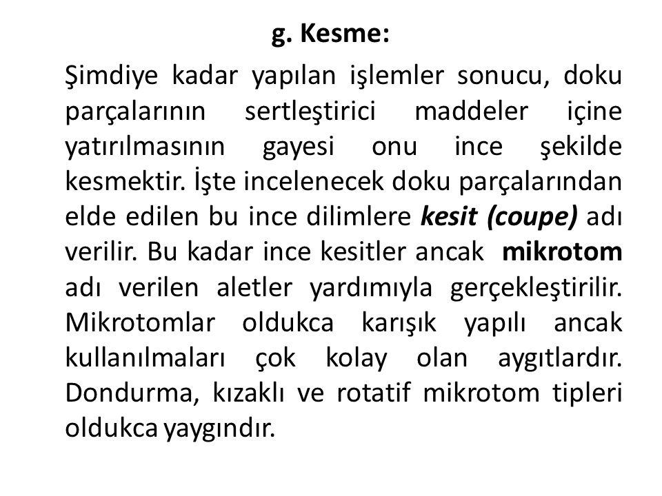 g. Kesme: