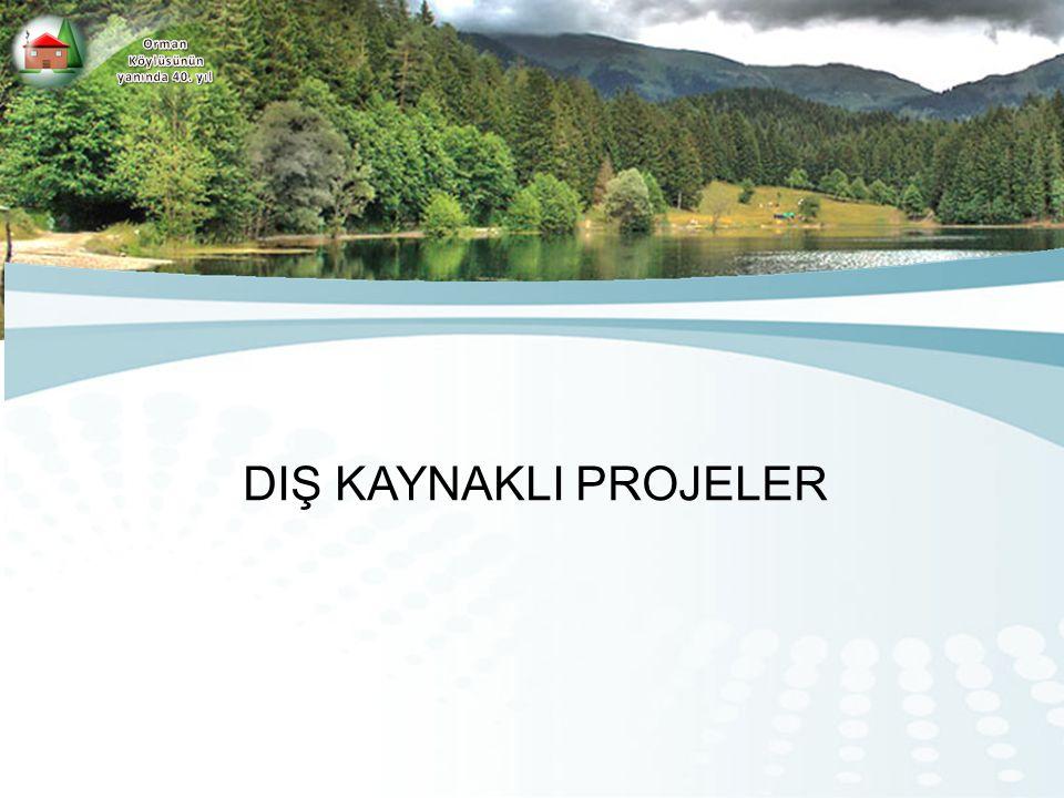 Orman Köylüsünün yanında 40. yıl DIŞ KAYNAKLI PROJELER