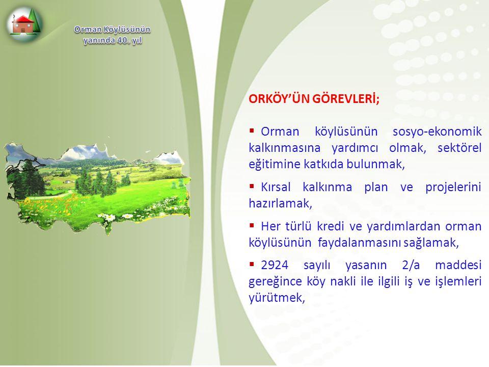 Kırsal kalkınma plan ve projelerini hazırlamak,