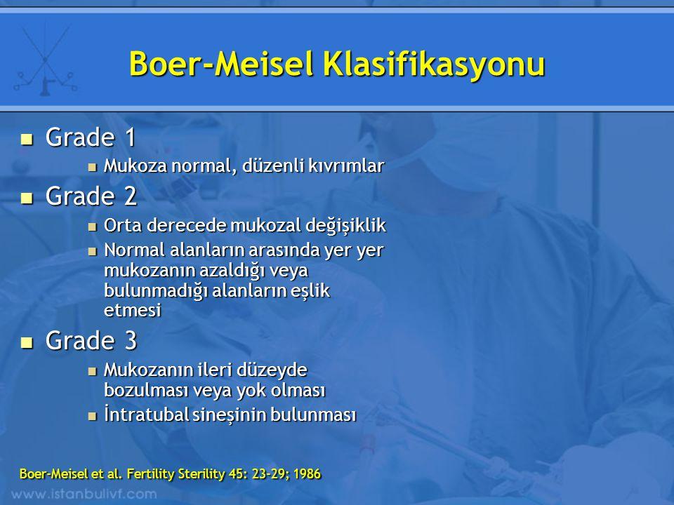 Boer-Meisel Klasifikasyonu