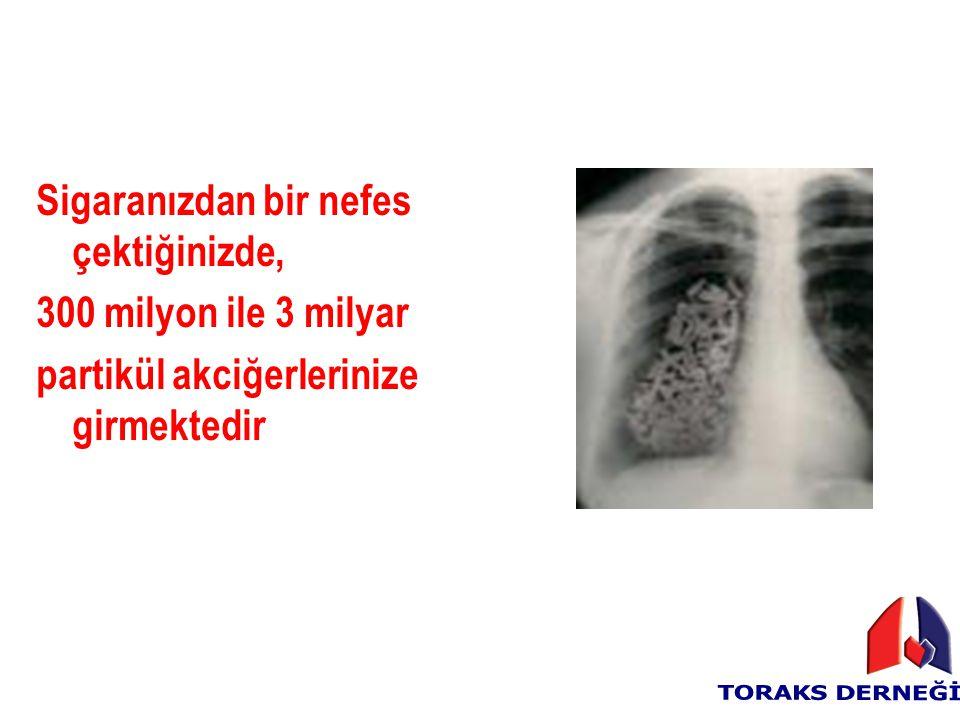 Sigaranızdan bir nefes çektiğinizde,