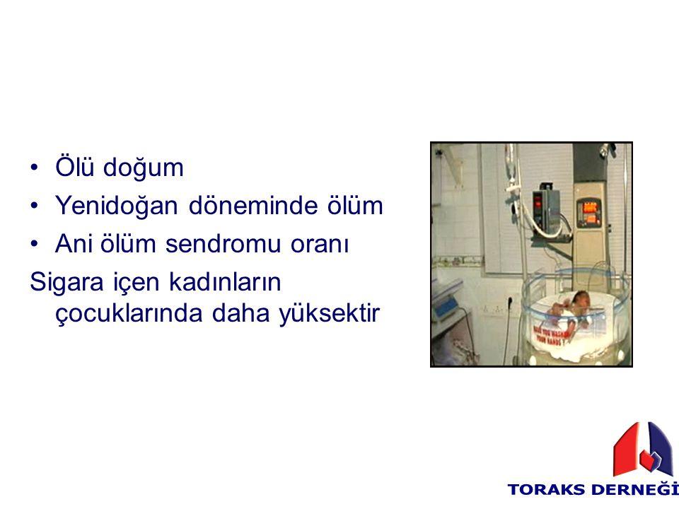 Ölü doğum Yenidoğan döneminde ölüm. Ani ölüm sendromu oranı.