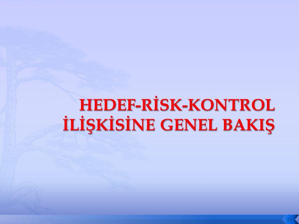 HEDEF-RİSK-KONTROL İLİŞKİSİNE GENEL BAKIŞ