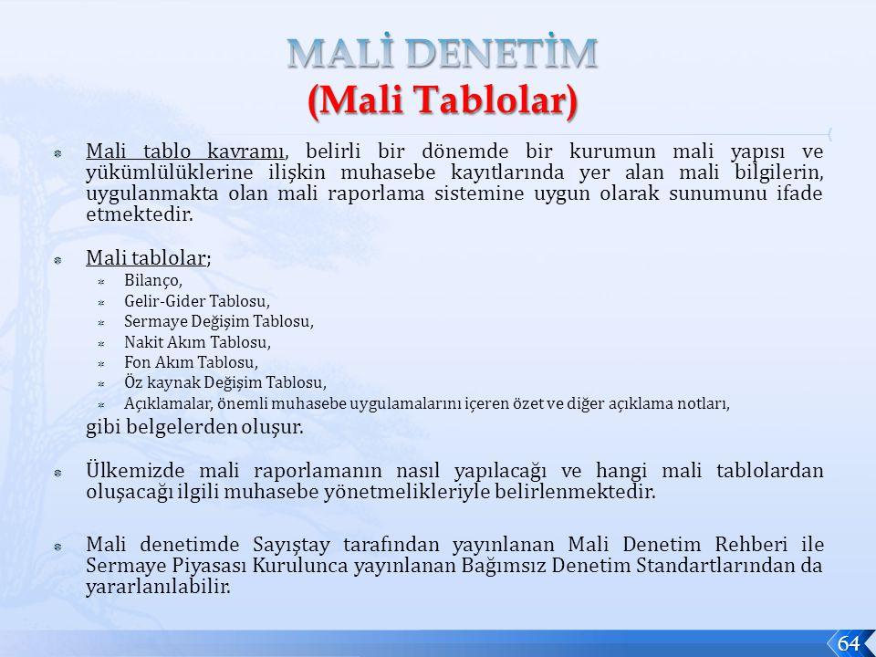 MALİ DENETİM (Mali Tablolar)