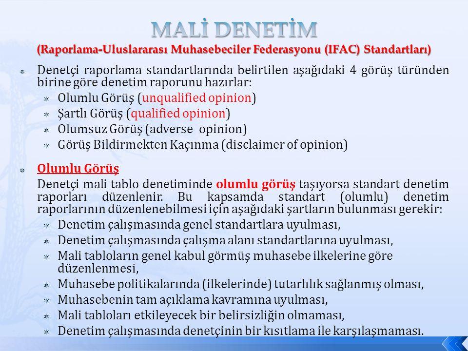 MALİ DENETİM (Raporlama-Uluslararası Muhasebeciler Federasyonu (IFAC) Standartları)