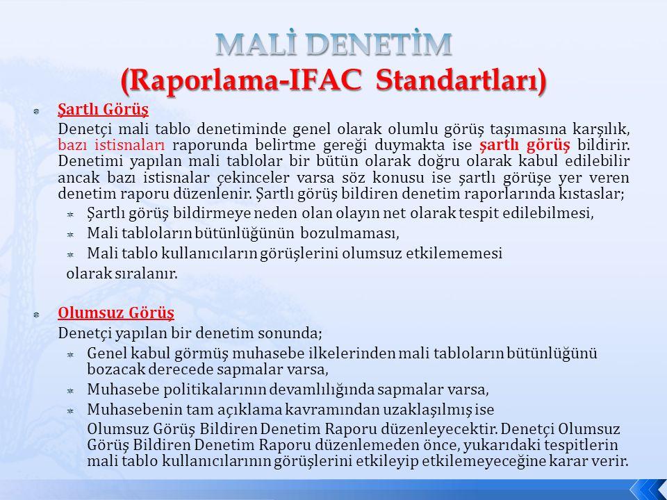 MALİ DENETİM (Raporlama-IFAC Standartları)