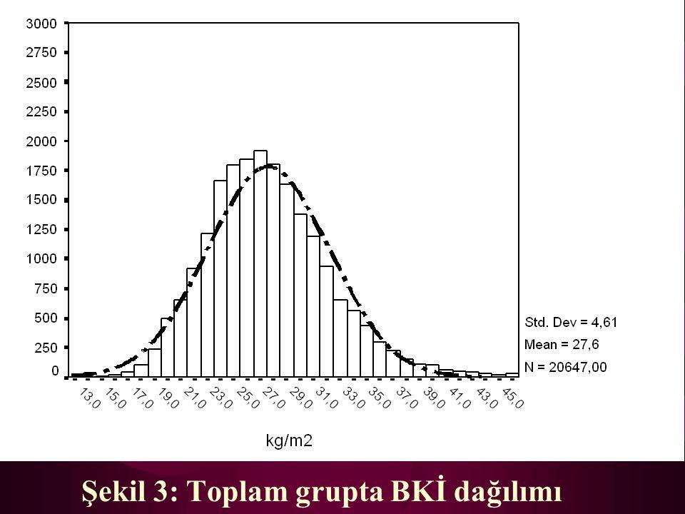 Şekil 3: Toplam grupta BKİ dağılımı
