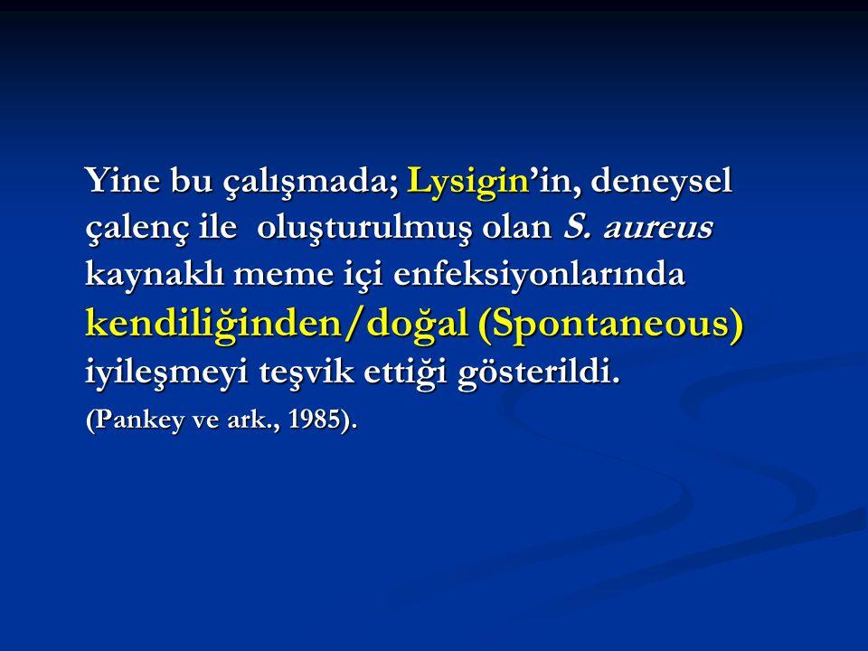Yine bu çalışmada; Lysigin'in, deneysel çalenç ile oluşturulmuş olan S
