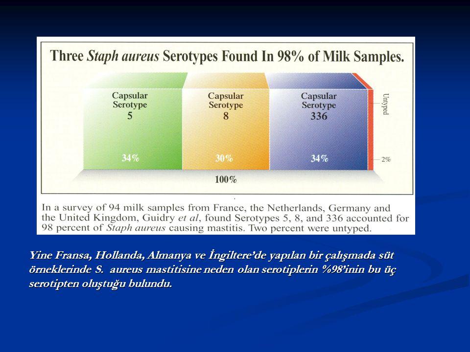 Yine Fransa, Hollanda, Almanya ve İngiltere'de yapılan bir çalışmada süt
