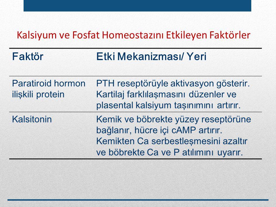 Kalsiyum ve Fosfat Homeostazını Etkileyen Faktörler