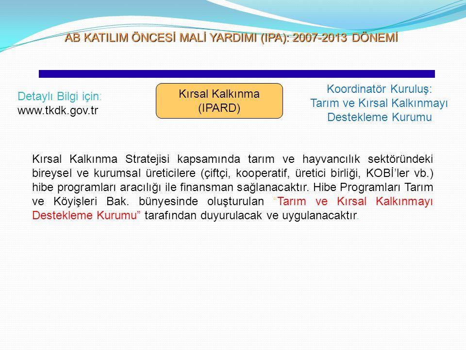 AB KATILIM ÖNCESİ MALİ YARDIMI (IPA): 2007-2013 DÖNEMİ