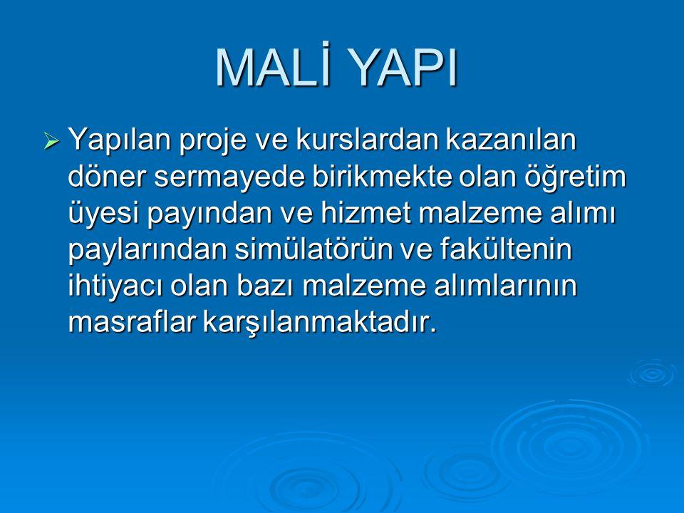 MALİ YAPI